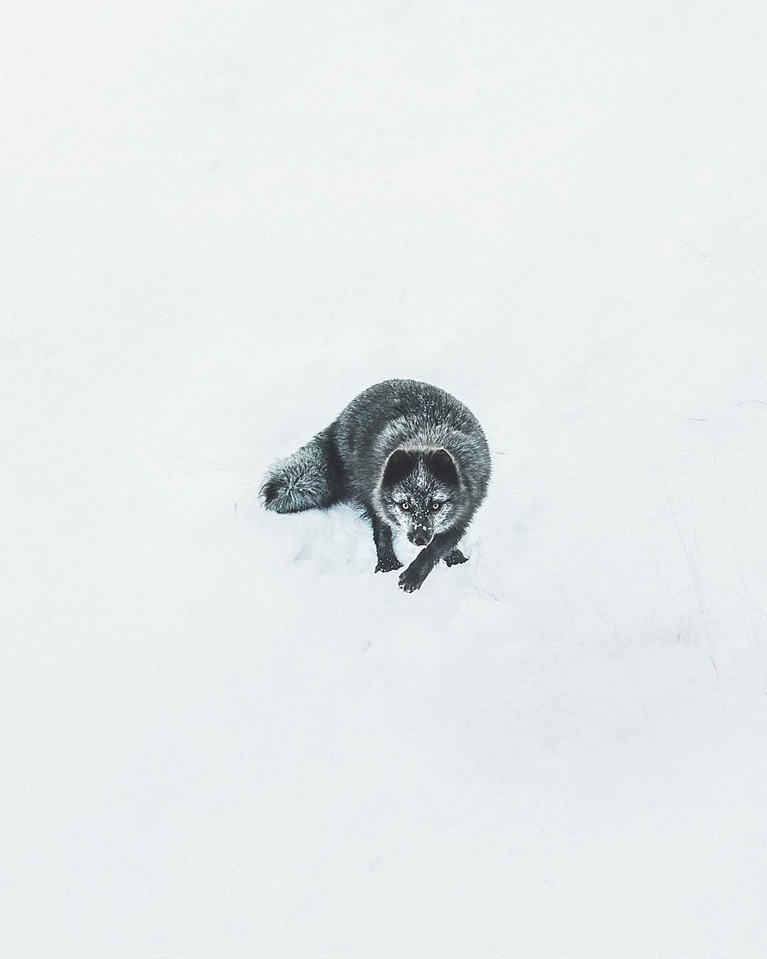 Iceland In Aerial Photographs By Benjamin Hardman