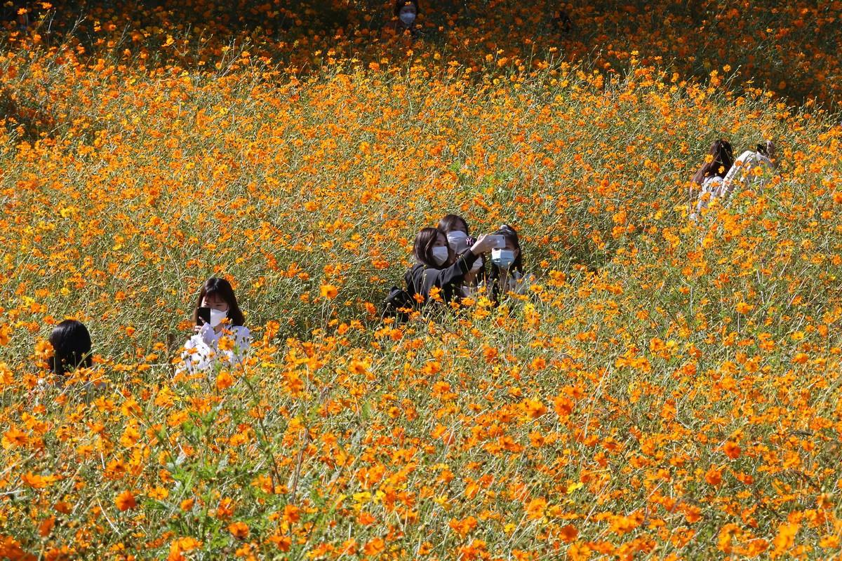 40 Interesting Photos From South Korea