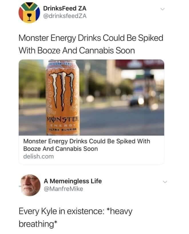50 Best Funny Kyle Monster Drywall Memes